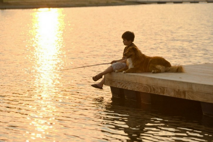 Boy fishing with dog at Sterling on the lake