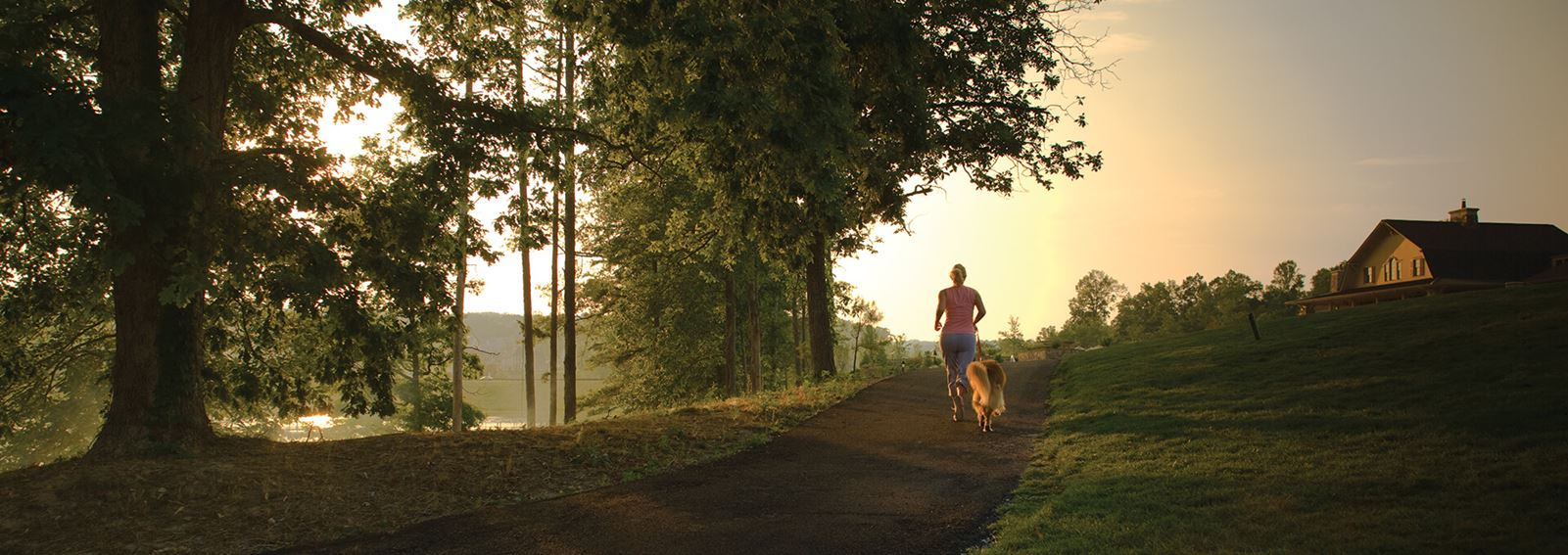 Woman running along tree lined trail at dawn in Sterling on the Lake.