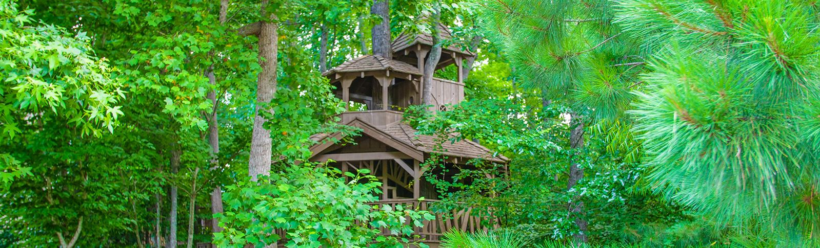 Treehouse-Sterling-on-the-Lake.jpg