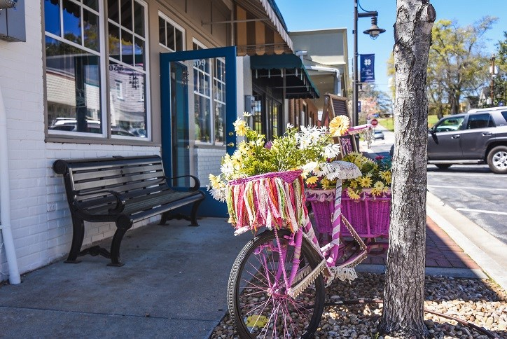 Downtown Flowery Branch with bicycle